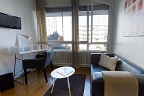furnished studio Lyon 6
